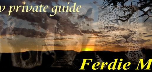 Veicle Safari, Walking Safari, Birding and courses